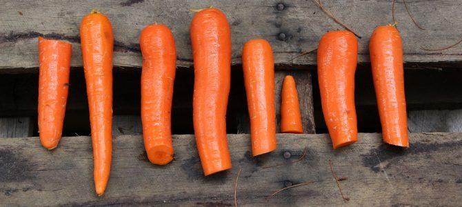 Paleo dieta – kelis milijonus metų atgal